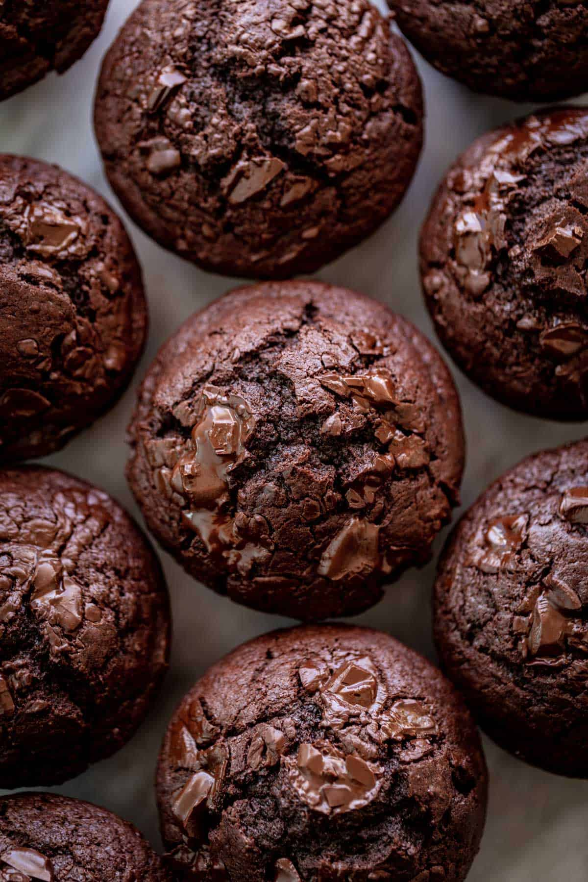 A batch of double chocolate chunk muffins