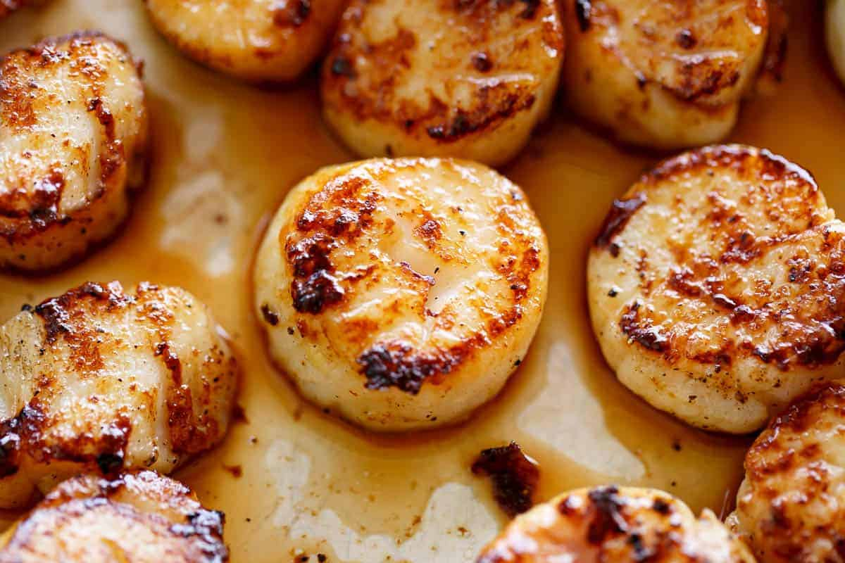 How to cook scallops #sear #scallops #butter #oil #skillet