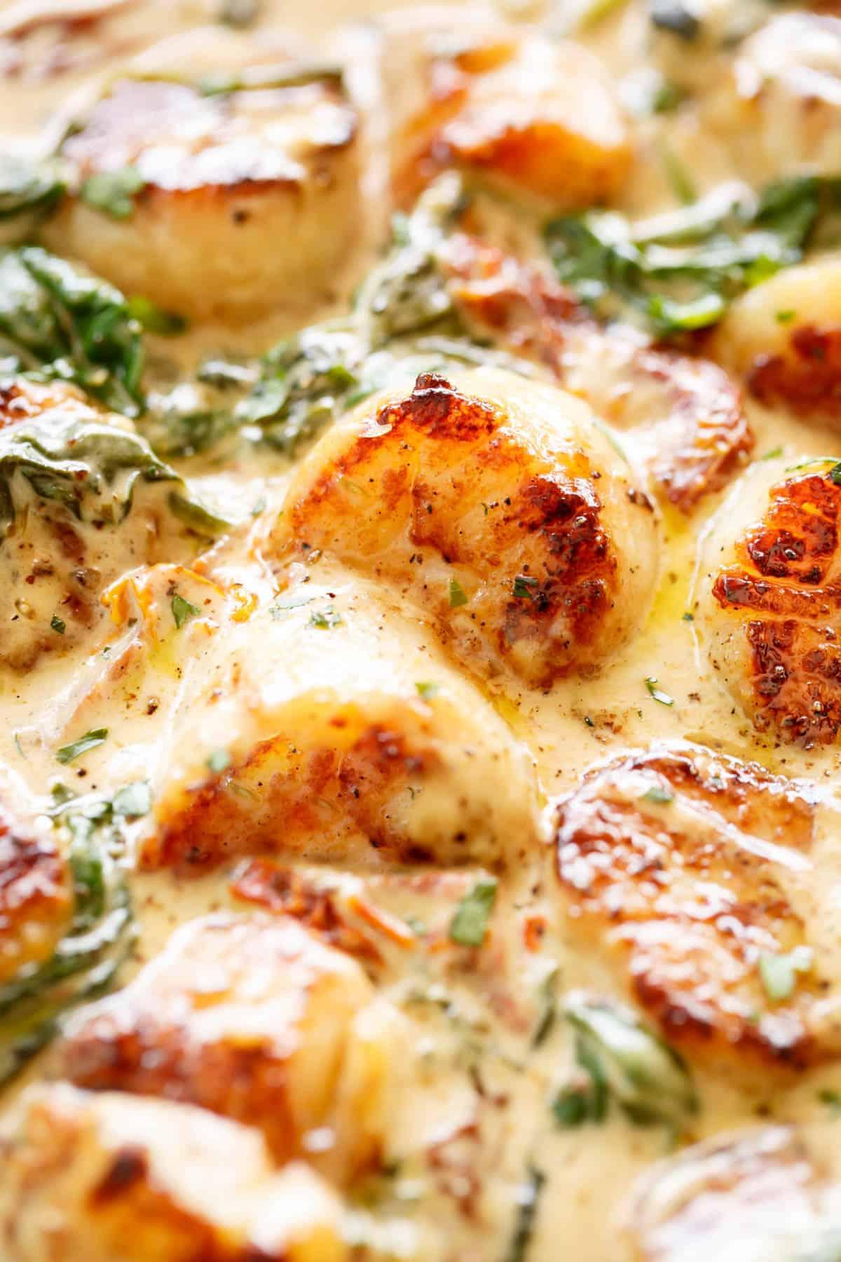 Creamy Tuscan Scallops close up #creamy #sauceforscallops