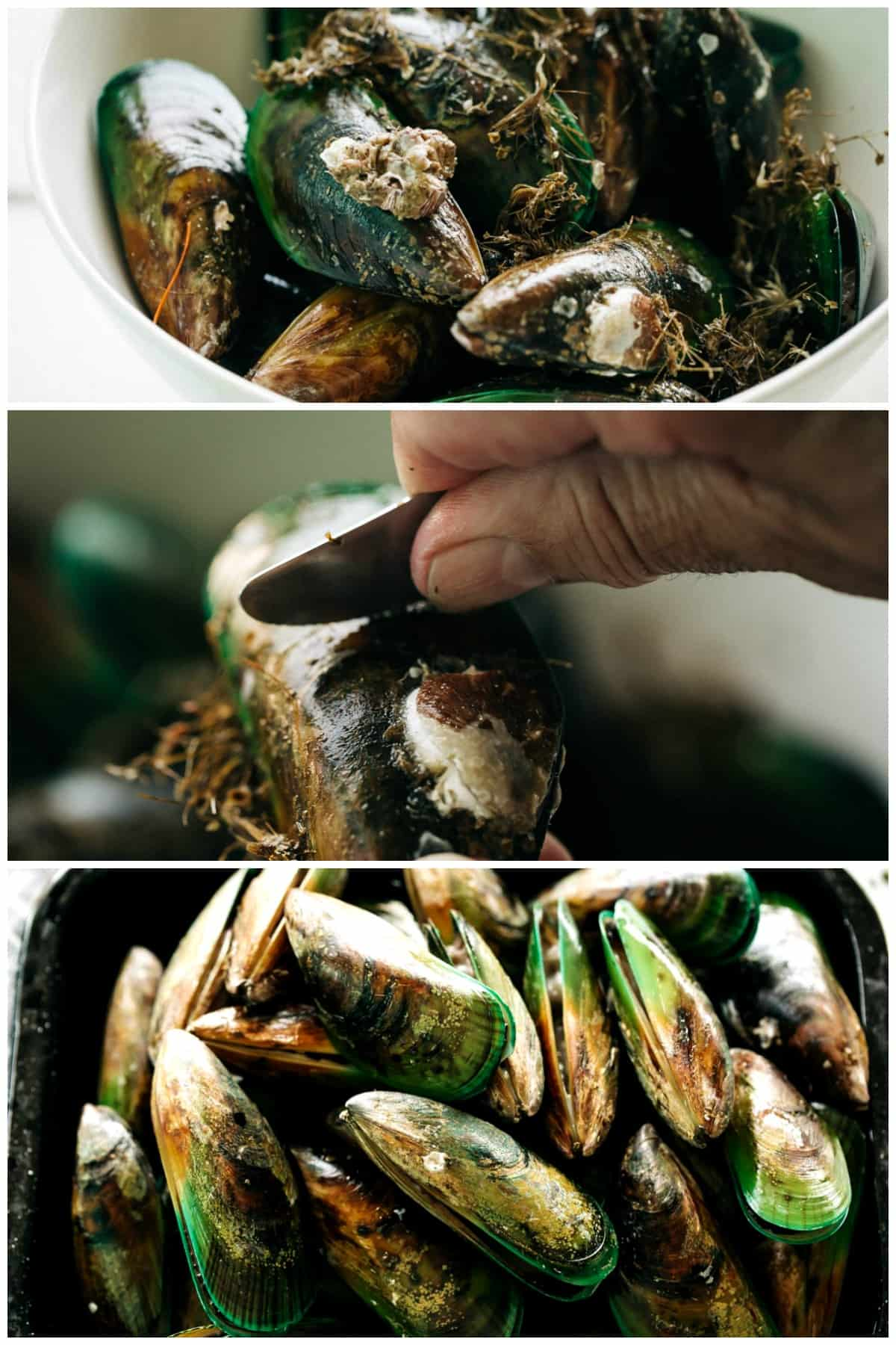 How To Cook French Steamed Mussels | cafedelites.com