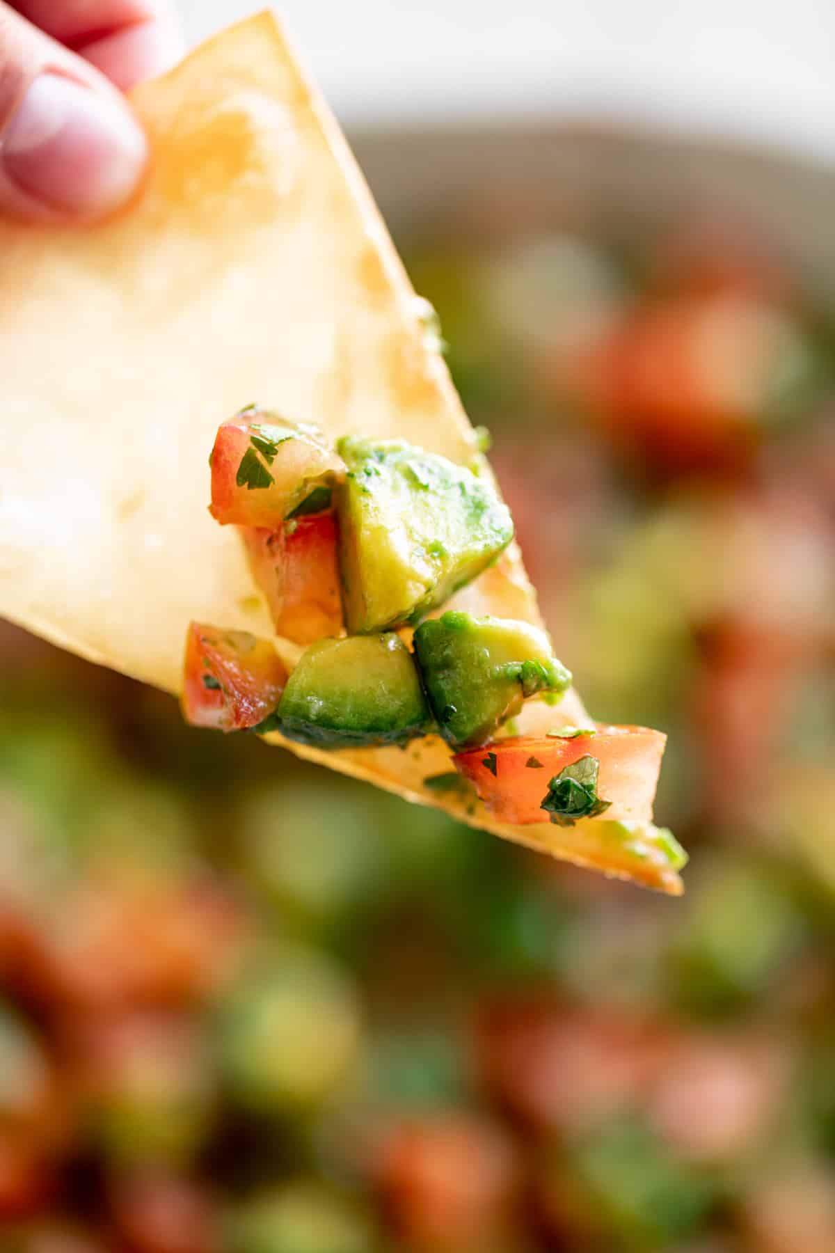 Tortilla chip dipped in avocado salsa | cafedelites.com